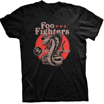 Foo Fighters - Snake