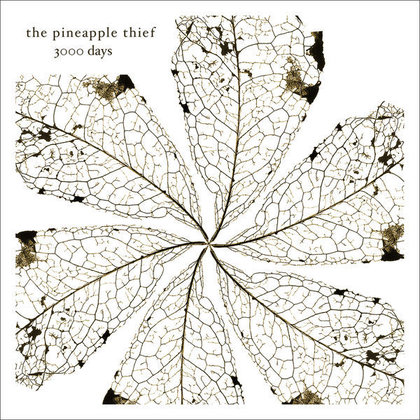 Pineapple Thief, The - 3000 Days